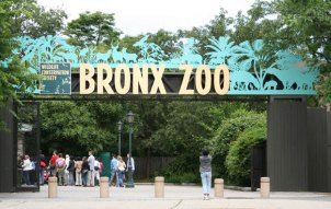 bronx-zoo-address